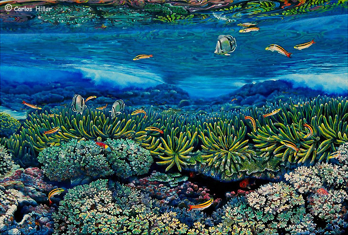 Coral reef and butterfly fish painting
